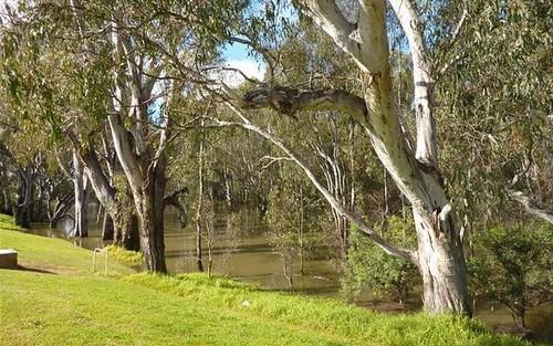 26 Macfarland Street, Barooga NSW 3644
