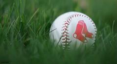 Sox In The Grass (disgruntledbaker1) Tags: bokeh disgruntledbaker baseball redsox boston