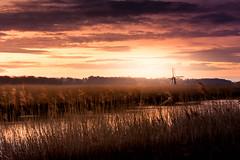 Herringfleet Mill (SimonTHGolfer) Tags: landscape landscapephotography light suffolk sunrise dawn sunset river waveney morning early reeds broads eastanglia uk nikon simontalbothurnphotography