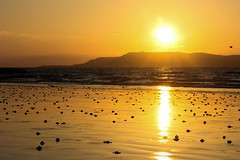 It's a beautiful day (A Costigan) Tags: sunrise donabate dublin morning dawn irishsea