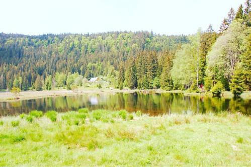 Hiking around kleiner Arbersee #kleinerarbersee #hikingadventures #nature #travel