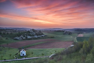 *Frühling im Wittlicher Tal II*