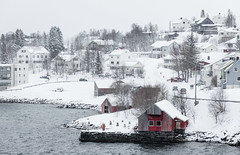A Snowy Landscape (Rachel Dunsdon) Tags: norway town redhouse white snowing snow trees