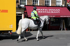 Indian food, perhaps? (Canadian Pacific) Tags: london england great britain unitedkingdom british 37 wc2 indian restaurant bhatti police metropolitan horse mounted aimg1254