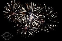 Fireworks at Epcot (Francine Schumpert) Tags: fireworks epcot night nighttime nightlight nikond810