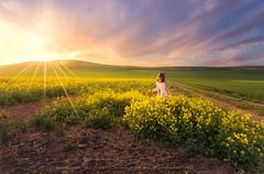 Juegos de Primavera (sgsierra) Tags: elba juego primavera spring color sunset flores flower sol star