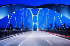 Osthafenbrücke (Philipp Klinger Photography) Tags: road street bridge blue trees light sunset sky tree cars lines car metal night river germany concrete deutschland lights evening am nikon hessen geometry frankfurt steel main curves illumination cable line cables hour bluehour brücke philipp frankfurtammain d800 hesse ffm mainhattan klinger osthafen nikond800 osthafenbrücke