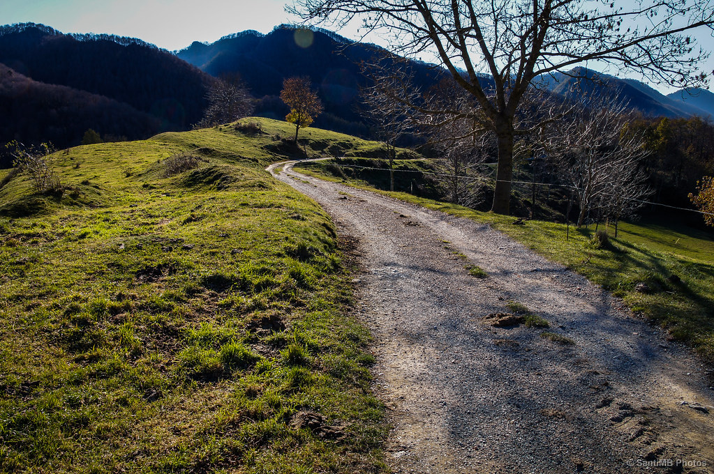 El camino de vuelta