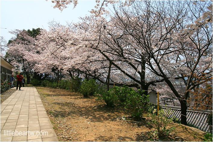 紀三井寺-50