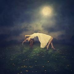 overcome (m.clemm) Tags: flowers woman moon girl field fairytale night evening dance fineart surreal levitation fantasy romantic moonlight dandelions fineartphotography whitedress dancingin