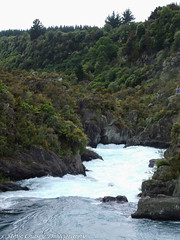 FFX-211206-NZ115 (Steve Chasey Photography) Tags: newzealand northisland fujifinepixs9500 aratiata