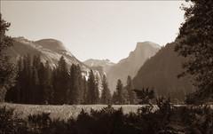 Yosemite (TWE42) Tags: california sepia blackwhite yosemite nationalparks yashica rangefinders lynx1000