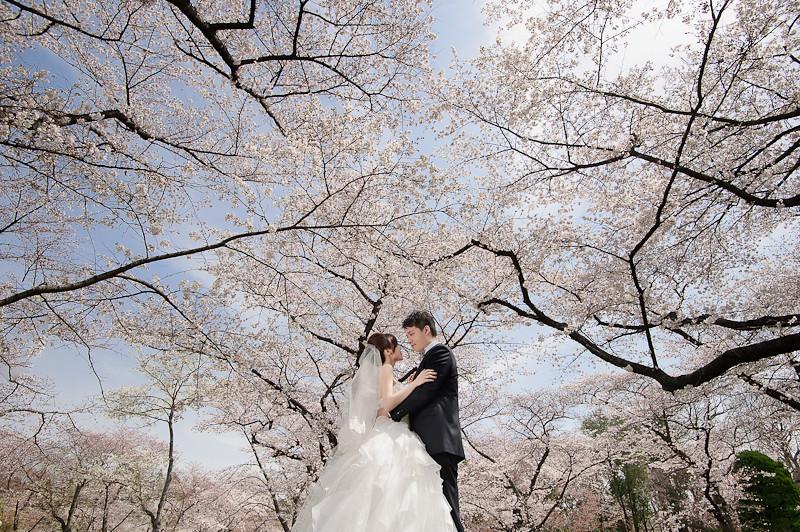 日本婚紗,關西婚紗,京都婚紗,京都植物園婚紗,京都御苑婚紗,清水寺和服,白川夜櫻,海外婚紗,高台寺婚紗,DSC_0025