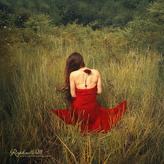 The Veins of the Earth (RaphaelleM.) Tags: red plant flower field grass rose forest blood dress blossom earth grow roots torn veins bound herb plantedness