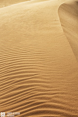 Saudi Arabia - Golden Texture Dune Of Saudi Arabia (Sarah Al-Sayegh Photography | www.salsayegh.com) Tags: canon desert cityskyline  landscapephotography  stateofkuwait  leefilters  canoneos5dmarkiii canon5dmark3 sarahhalsayeghphotography infosalsayeghcom