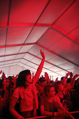 jackieleeyoung_psychfest_may3_octopusprojectcrowd2