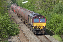 66145 working 6V55 1530 Bedworth Murco Sidings - Robeston Sidings at Judds lane 19/05/2014 (Paul-Green) Tags: 3 canon photo mark iii may engine railway loco trains db 66 class photograph locomotive 1ds tanks 2014 bedworth sidings murco disel 66145 6v55