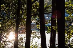 Lillängshamnen (Mange J) Tags: summer boat pentax sweden sverige behind hammarö värmland k7 tamron70300 skoghall lillängen pentaxk7 magnusjakobsson