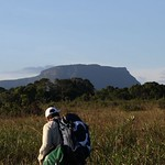Tafelberg Tepui as seem from the savanna near Kappel Airstrip in central Suriname. Photo by Julian Aguirre.