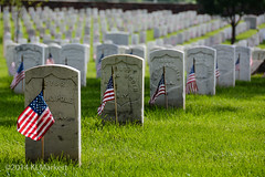D71_3146 (KLMP) Tags: old usa cemetery infantry arlington us 3d guard flags national va regiment in
