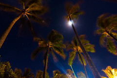 Nightsky (rbonbonm) Tags: trees sky moon motion blur night hawaii long exposure oahu wide palm tokina