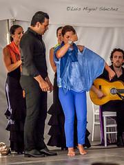 _46X6548 (luismisax) Tags: cadiz sarabaras canonef70200f4lisusm canon1dmarkiii elbaluarte bluefincook flamencodancingtour
