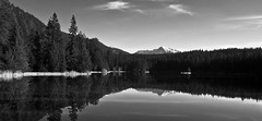 Still water (monochrome) (CNorthExplores) Tags: travel autumn bw white lake canada black reflection canon alberta jaspernationalpark g11 canadianrockies valleyofthefivelakes fifthlake explored