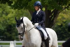 Dressage Dreams: Impressions from a Sunday at Lamplight (Tackshots) Tags: horse wayne lamplight equestrian dressage dressagehorse