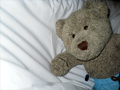 """""""Care to join me?"""" (pefkosmad) Tags: bear vacation white holiday ted mountains hotel bed italian girlfriend teddy ns hellas sheets greece cotton alpine invitation dating chalet greekislands griechenland rhodes abbreviations nonsmoker dodecanese lonelyhearts fta vgl wltm verygoodlooking elafos profitisilias gsoh goodsenseofhumour wouldliketomeet tedricstudmuffin tedsholibobs funtraveladventure"""