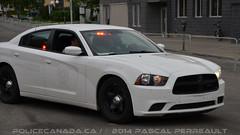 Sret du Qubec (QC) (policecanada.ca) Tags: quebec police stealth dodge sq 8210 furtif surete
