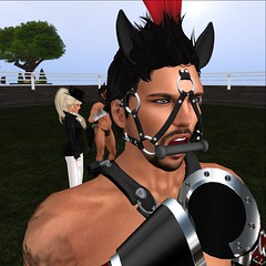 Kane (Dominion Femdom) Tags: secondlife femdom dominion ponyplay thoroughbredrally