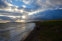 Compton Bay (Martin P Perry) Tags: sunset sea cloud beach clouds bay day cows cloudy isleofwight isle fossils wight iow freshwaterbay comptonbay tennysondown martinperry