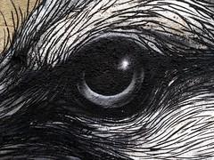 Public Art in Pilsen, Chicago, IL, USA (Ted & John Koston) Tags: usa chicago art wall concrete graffiti paint traintracks pilsen il spraypaint publicart tagger 2014 roa koston americanart chicagoartists pilsenneighborhood