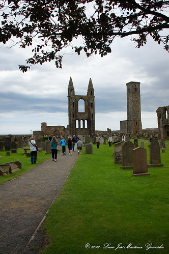 "Saint Andrews - Saint Andrews Cathedral • <a style=""font-size:0.8em;"" href=""http://www.flickr.com/photos/26679841@N00/14766162081/"" target=""_blank"">View on Flickr</a>"