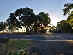 19Mar17 Almost sunset in Reynella.  #picaday #2017pad #sunset #reynella #southaustralia