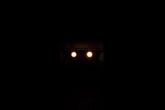 #Dark Light (David C W Wang) Tags: danboard 風暴士兵 阿愣 公仔 玩具 toy darklight stormtropper