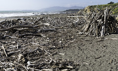 Wood Strewn Beach (Joe Josephs: 3,122,834 views - thank you) Tags: california californiacoast cambria joejosephs photojournalism â©joejosephs2017 moonstonebeach photojournalsim landscapephotography landscapes beaches beach storms wood driftwood travelphotography travel ©joejosephs2017 westcoast californialandscape