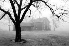 What now? (Earl Reinink) Tags: spring weather fog historic historicbuilding niagara ontario canada monochrome blackandwhite architecture earl reinink earlreinink nikon eazdattdia