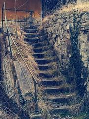 Badgastein (Harald Reichmann) Tags: badgastein salzburg grabenbäckerquelle stiege stufe mauer stein geschichte vergangenheit ruine verfall untergang