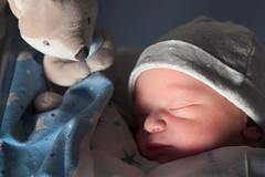 Diego (Eduardo Valero Suardiaz) Tags: sleep sleeping toy durmiendo dormir child baby zorro bebe muãƒâ±eco diego fox madrid espaãƒâ±a