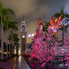 Stop! Blossom Time. (Tim van Zundert) Tags: clocktower landmark tsimshatsui photography cny architecture palmtrees city night evening longexposure hongkong kowloonbay kowloon china sony a7r voigtlander 21mm ultron square 1x1 blossom chinesenewyear