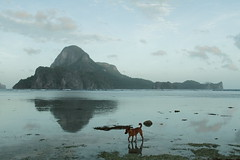 early morning view from our stay at AngelNido Resort 8 (Journey of A Thousand Miles) Tags: philippines elnido asia 2017 palawan seascape ocean sea island
