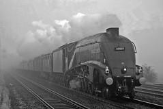 60009 (paul_braybrook) Tags: 60009 unionofsouthafrica lner classa4 pacific steamlocomotive copmanthorpe york northyorkshire railwaytouringcompany newcastle kingscross railway railtour trains