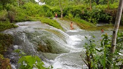 BOHOL (canencia) Tags: bohol philippines inambakan falls vacation nature tourist water white grass stone playing dive enjoy swimming children flow flowing river