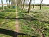 """2017-03-25   Zoetermeer-tocht 25 Km (87) • <a style=""""font-size:0.8em;"""" href=""""http://www.flickr.com/photos/118469228@N03/33321609880/"""" target=""""_blank"""">View on Flickr</a>"""