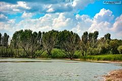 Hirfanlı Barajı (zulkifaltin) Tags: baraj sahil su akarsu hirfanlı kırşehir balık kızılırmak göl doğa landscape water outdoor gökyüzü hayat ağaç tree yeşil balıkçı