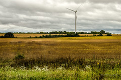 Iowa - through the car window (sandy bohlken) Tags: 2016 day17 iowa september travel ontheroad vacation windturbine