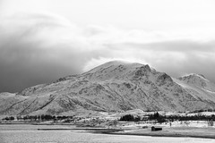 What's that coming over the hill? (OR_U) Tags: 2017 oru norway lofoten smedvik bw blackandwhite blackwhite monochrome schwarzweiss hill theautomatic snow ice weather winter mountain coast shore wind