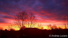 March 30, 2017 - A gorgeous sunrise in Thornton. (Andrea Lucero)