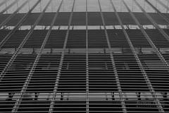 DSC09911_s (AndiP66) Tags: architecture architektur basel schweiz switzerland blackandwhite schwarzweiss schwarz weiss black white monochrome sony sonyalpha 7markii 7ii 7m2 a7ii alpha ilce7m2 sonyfe28–70mmf35–56oss fe 28–70mm f35–56 sel2870 emount kitlens andreaspeters